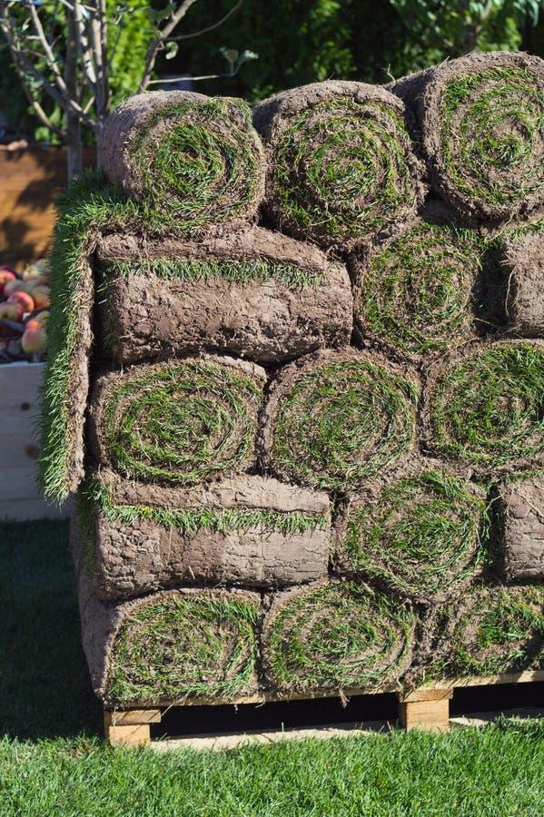 Le pile di zolla rotola per nuovo prato inglese fotografie stock