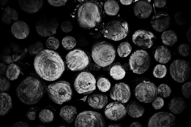 Le pin enregistre le fond photographie stock libre de droits