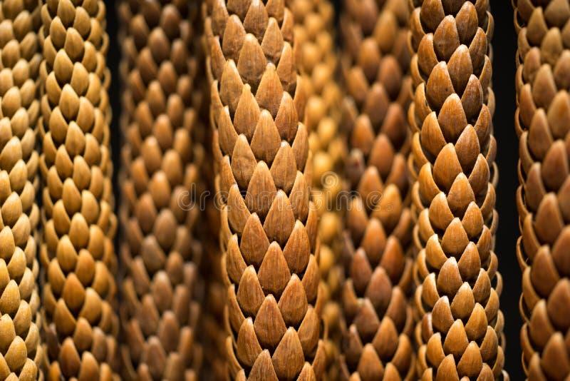 Le pin laisse la macro photo photo libre de droits