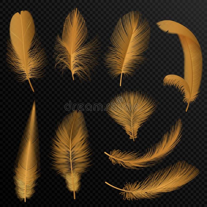 Le piume tribali dorate di lusso realistiche hanno messo isolato sul nero illustrazione vettoriale
