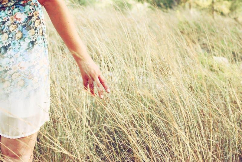 Le plan rapproché d'une femme remet l'herbe grande émouvante dans le domaine Foyer sélectif image libre de droits