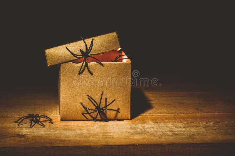 Le plan rapproché de la boîte mystérieuse d'horreur, décorent des araignées photos libres de droits