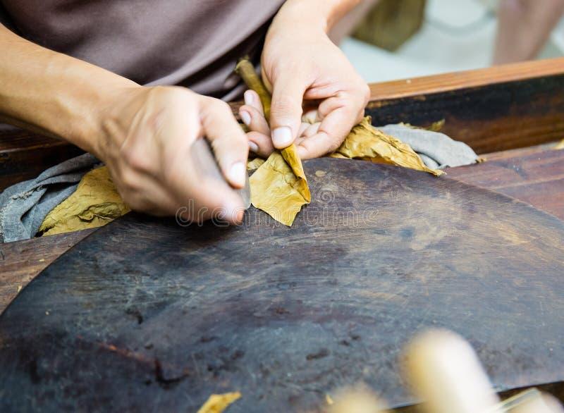 Le plan rapproché des mains faisant le cigare à partir du tabac part Fabrication traditionnelle des cigares La république dominic image stock