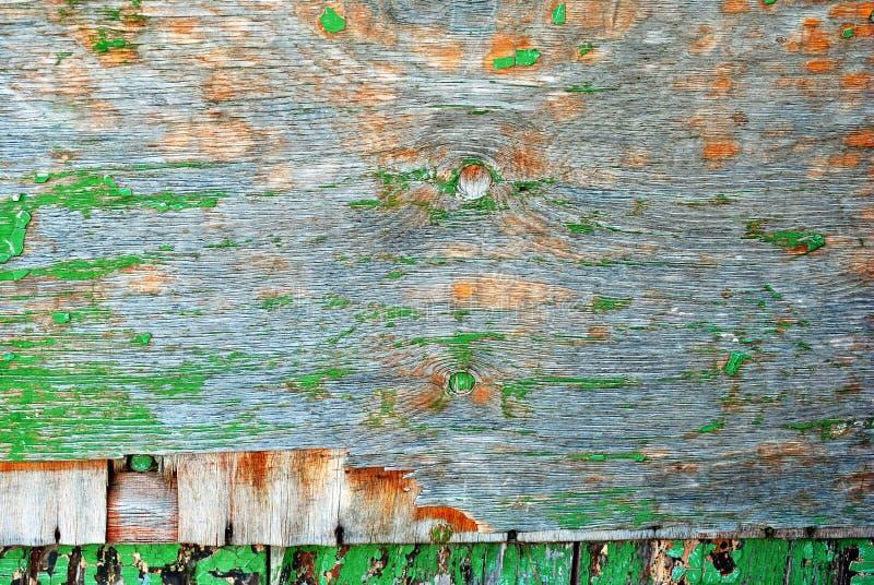 Le plance di legno dipinte misere verdi sorgono la fine sul dettaglio, fondo di lerciume fotografia stock