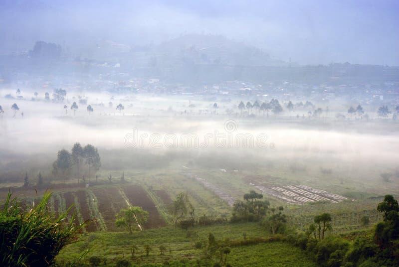 Le plateau de Dieng wonosobo centre de Java Indonésie avec la brume matinale photographie stock libre de droits