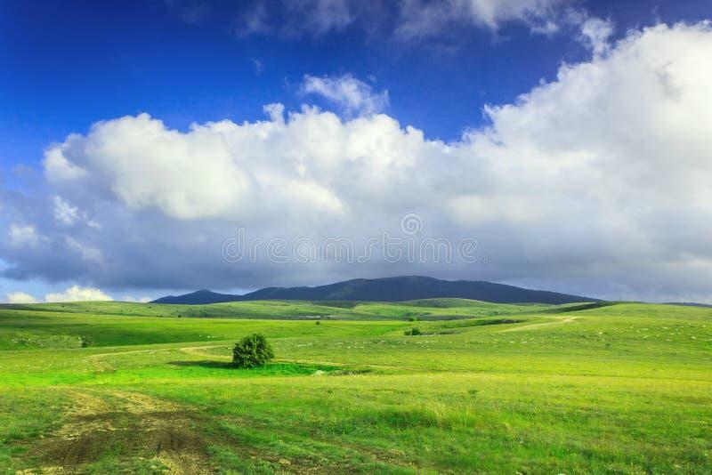 Le plateau en Crimée image stock