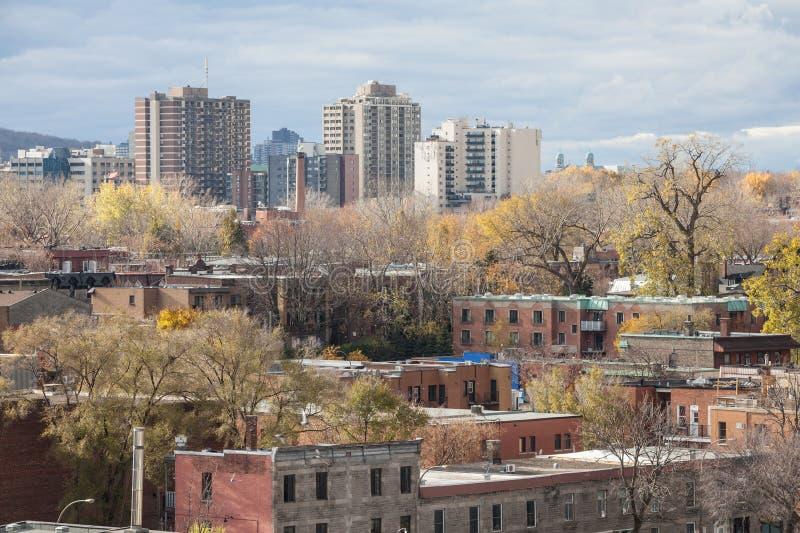 Le Plateau mieszkaniowy okręg Montreal, Quebec, Kanada, widzieć z góry, z swój typowymi indywidualnymi domami robić czerwona cegł zdjęcia stock