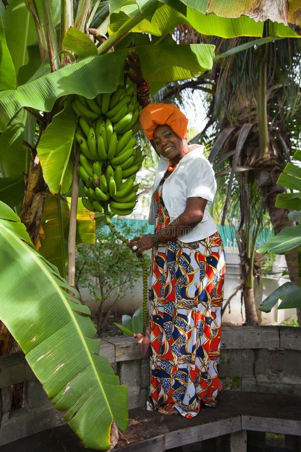 Le plein corps vertical d'une femme joyeuse d'Afro-am?ricain portant une robe nationale color?e lumineuse pose dans le jardin photo stock