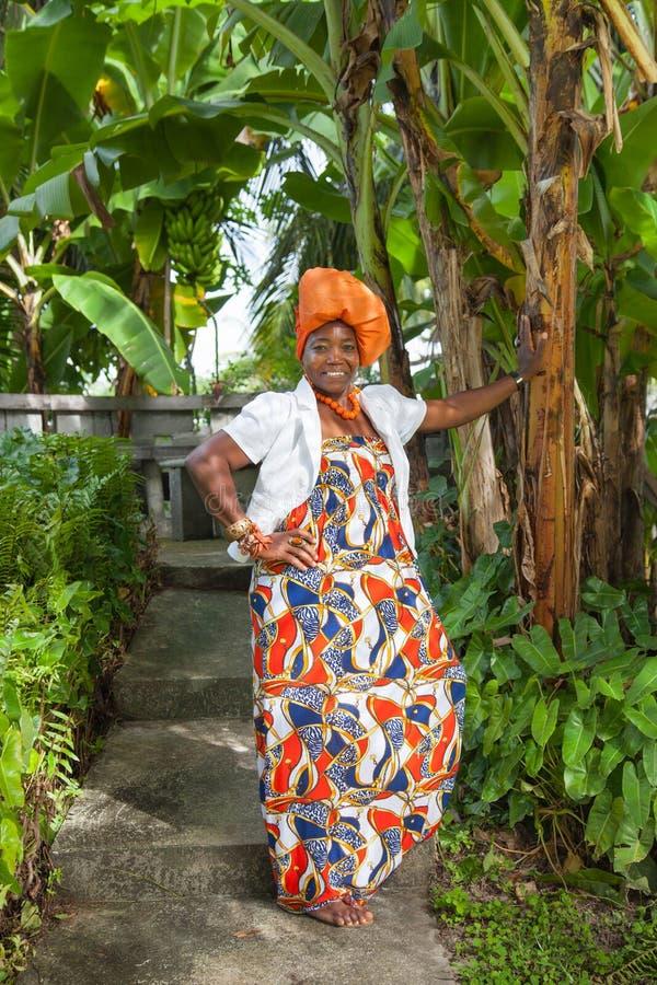 Le plein corps vertical d'une femme joyeuse d'Afro-am?ricain poses nationales color?es lumineuses de port d'une robe photo libre de droits