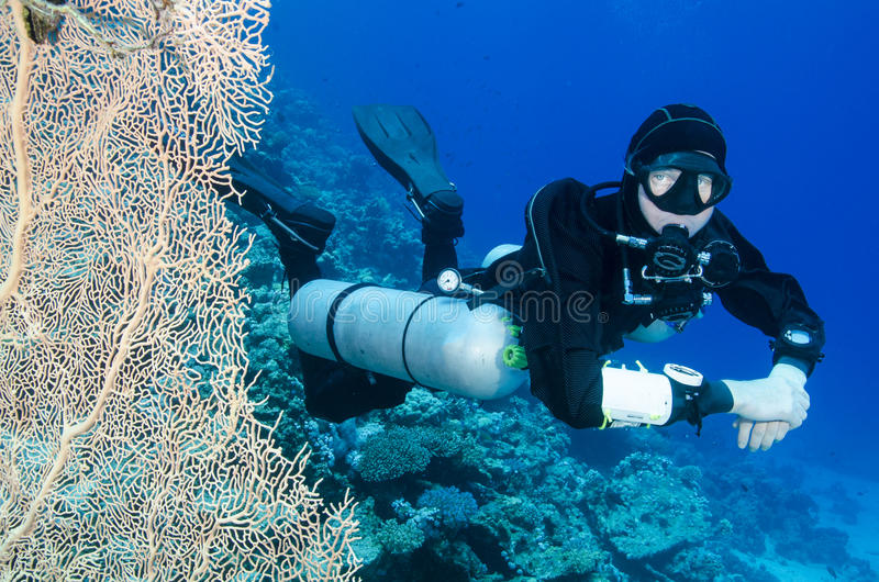 Plongeur autonome latéral de bâti photo libre de droits