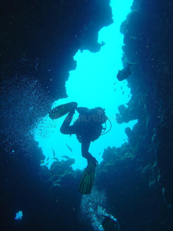 Le plongeur monte image stock