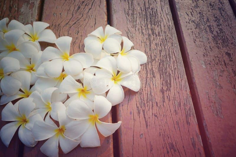 Le plumeria blanc et jaune fleurit en forme de coeur sur le vieux fond en bois photographie stock