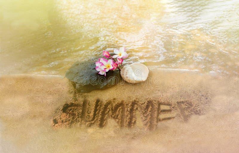 Le plumeria de fleur ou le groupe de frangipani avec la roche de cascade et la coquille roses de conque de mer sur le sable échou photographie stock