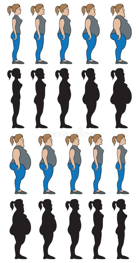 Le poids présente la femelle illustration libre de droits
