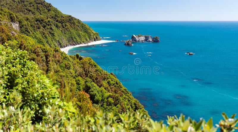 Le point du chevalier, Nouvelle-Zélande image libre de droits