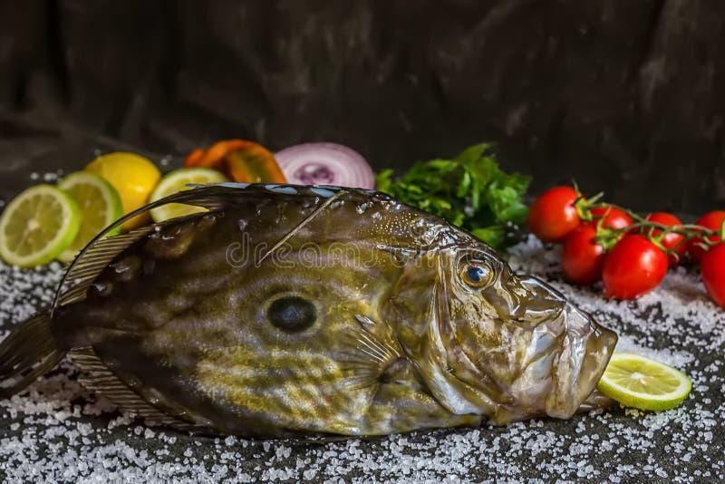 Le poisson cru méditerranéen de John Dory avec des tomates, citron, salade, persil, mangent la composition photos libres de droits