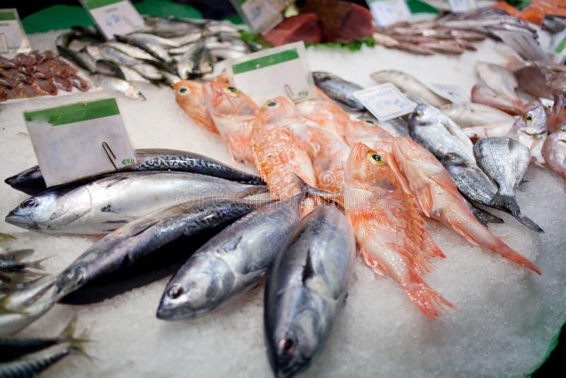 Le poisson frais se trouve sur un compteur de boutique photos libres de droits