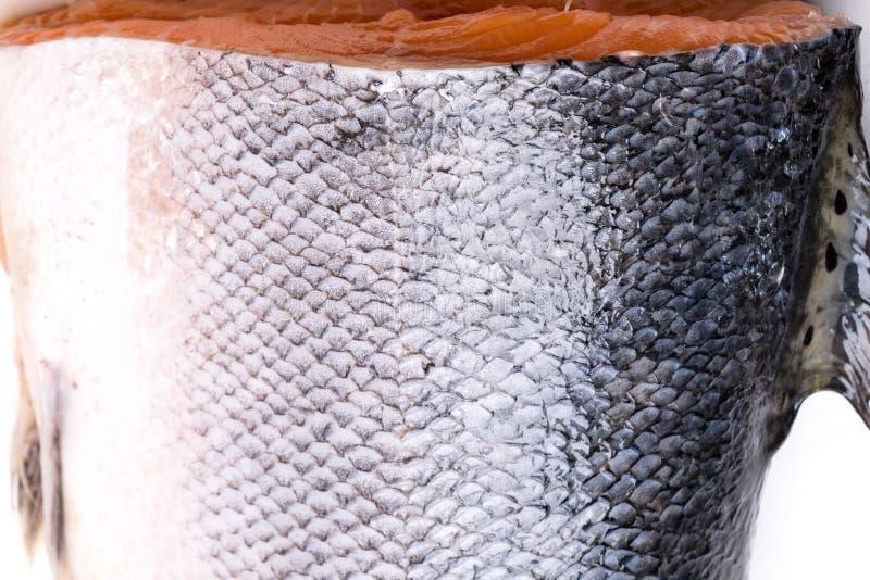 Le poisson saumoné mesure le fond grunge de texture photographie stock libre de droits