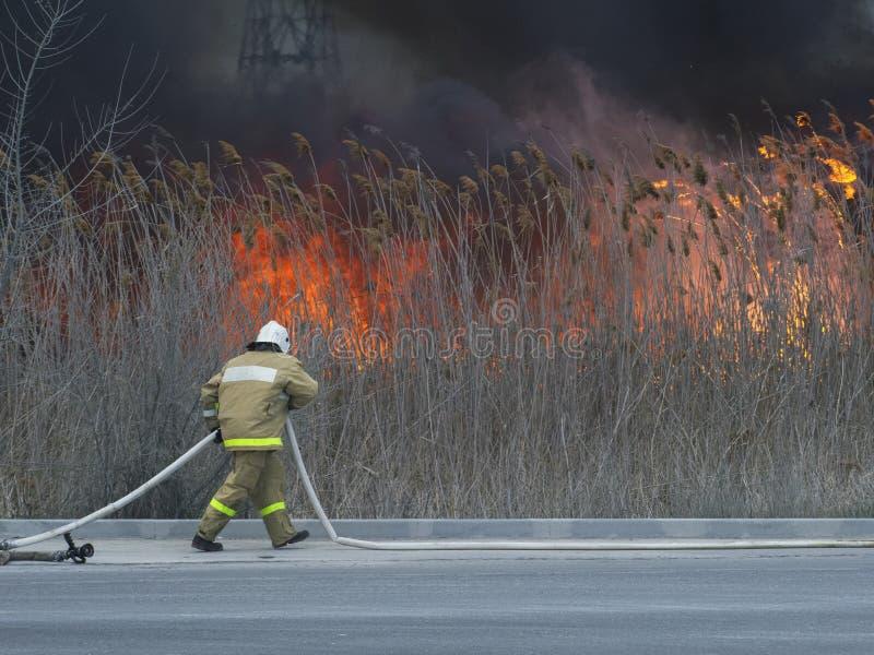 Le pompier doit pressé éteindre un feu photos stock