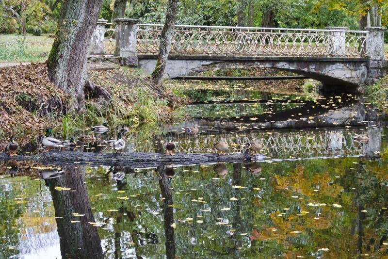 Le pont à travers le canal artificiel a alimenté par la rivière de Versupite photos stock