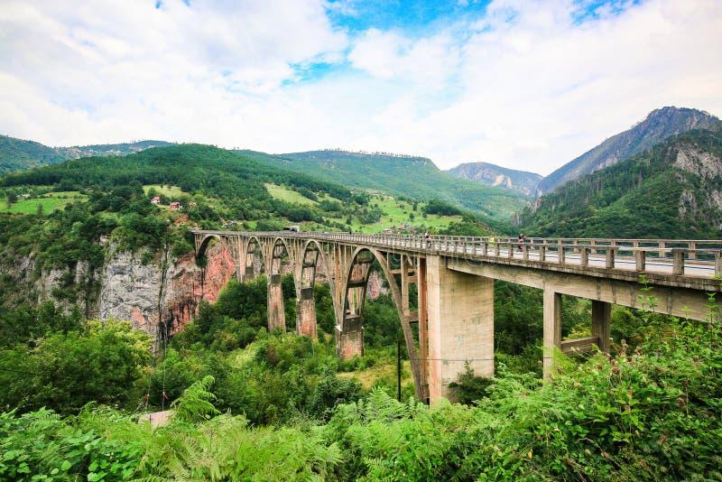Le pont concret de Durdevica de voûte au-dessus de Tara River Canyon, la vallée de montagne et la forêt aménagent en parc en parc image libre de droits