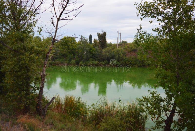 Le pont ferroviaire gris de Samara au-dessus de la rivière Samara avec un paysage magnifique, des arbres verts, des buissons et d photographie stock