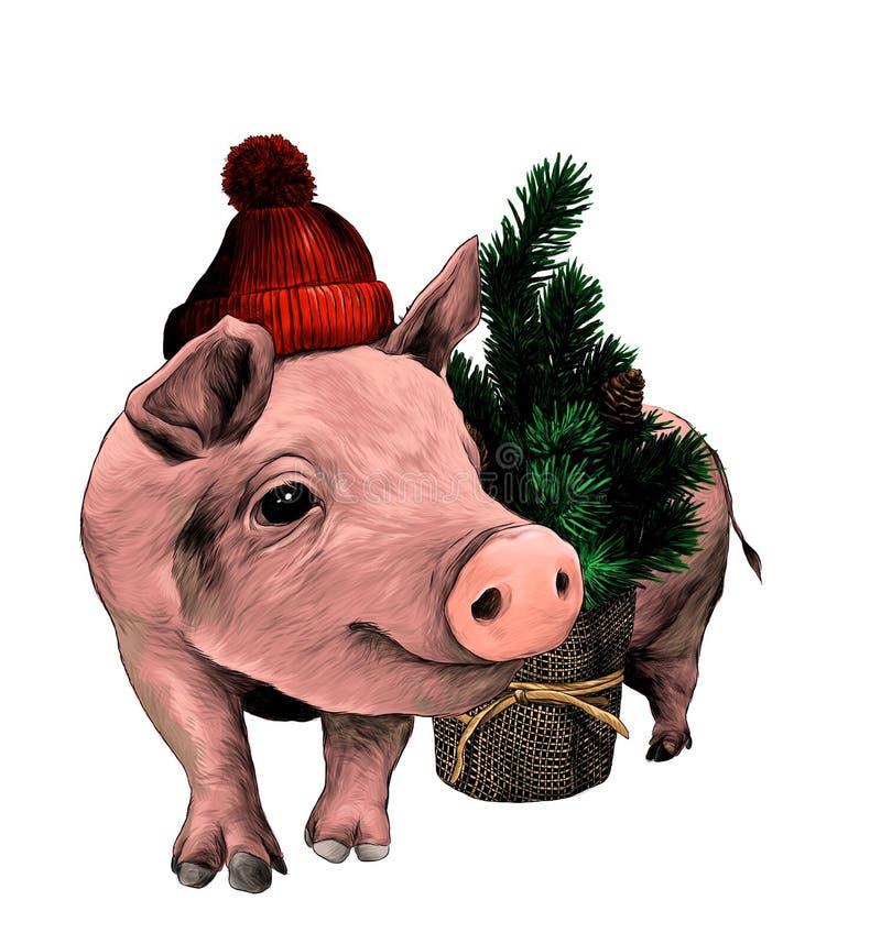 Le porc de Noël dans un chapeau chaud avec un pompon se tient près d'un petit arbre de Noël décoratif illustration de vecteur