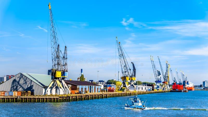 Le port de conteneur de Rotterdam aux Pays-Bas images libres de droits
