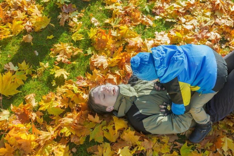 Le portrait aérien de combat espiègle de famille de père et de fils à l'automne jaune et orange tombé part du groundcover photographie stock
