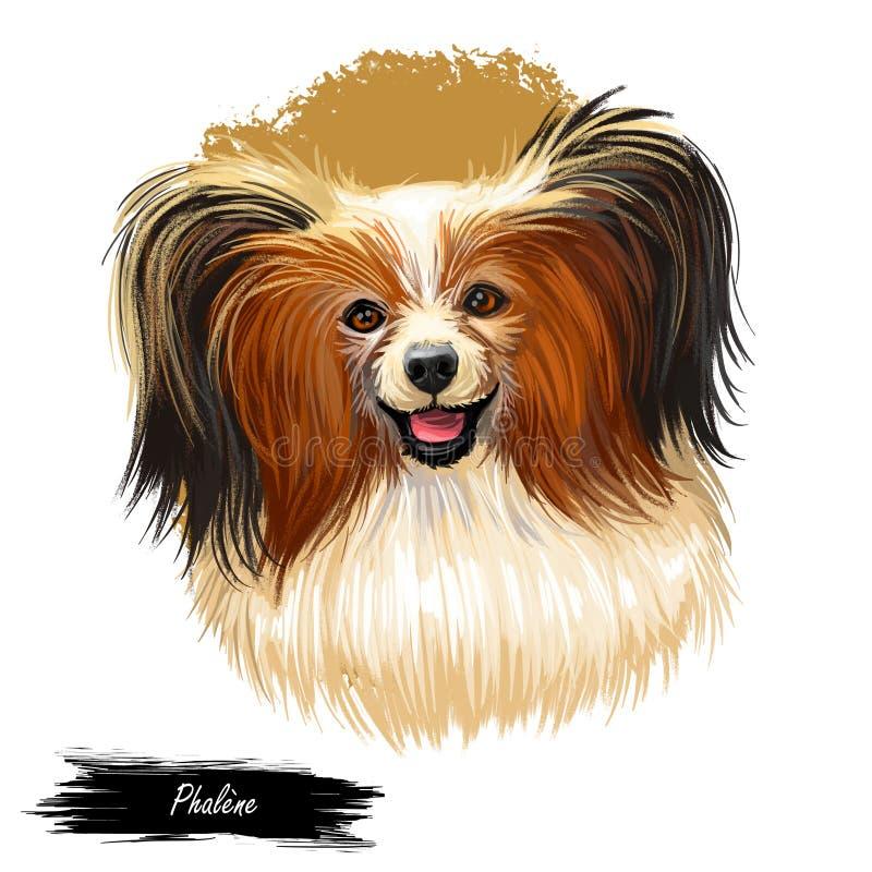 Le portrait de chien de Phalene a isolé Illustration d'art de Digital pour le Web, la copie de T-shirt et la conception de couver illustration libre de droits