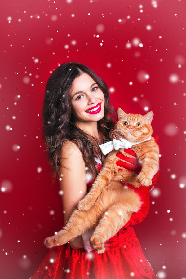 Le portrait de la belle fille sexy portant le père noël vêtx avec le chat britannique rouge photos stock