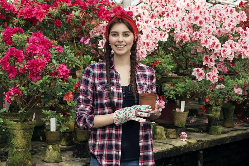 Le portrait de la jardinière de sourire de jeune femme avec des tresses tenant le pot choisit quelle fleur à transplanter photographie stock libre de droits