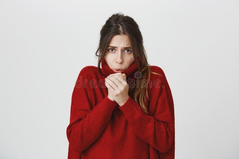 Le portrait de la jeune femme élégante attirante avec les cheveux bruns dans le chandail rouge d'hiver gelant, réchauffant remet  images stock