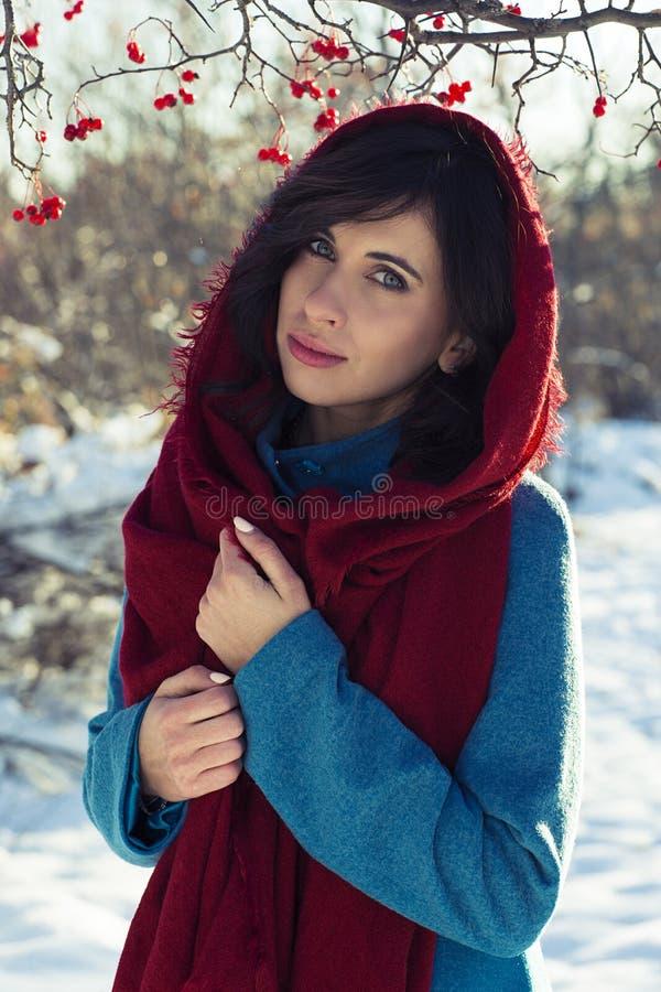 Le portrait de la jeune femme de brune s'est habillé dans l'écharpe rouge et le manteau bleu au-dessus du parc d'hiver photos libres de droits