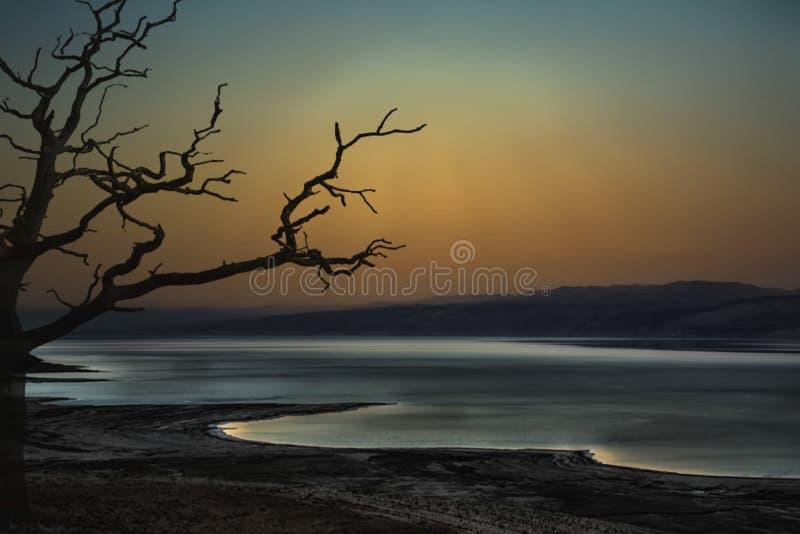 Le portrait de la mer morte en Israël par nuit, le clair de lune intensif réfléchit sur les vagues et crée une totalité fantomati photos libres de droits
