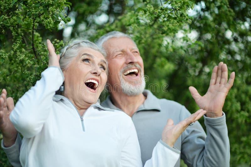 Le portrait du beau sourire a sorti les couples supérieurs photographie stock