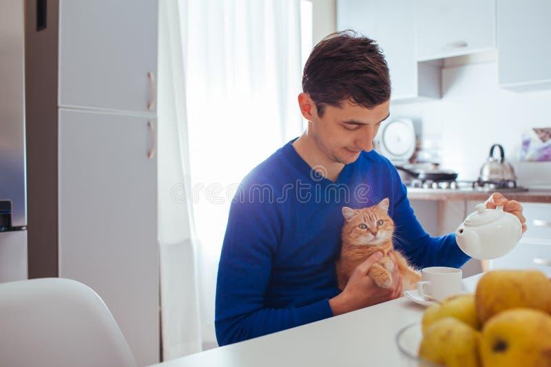 Le portrait du jeune homme beau verse le thé avec le chat sur la cuisine image stock
