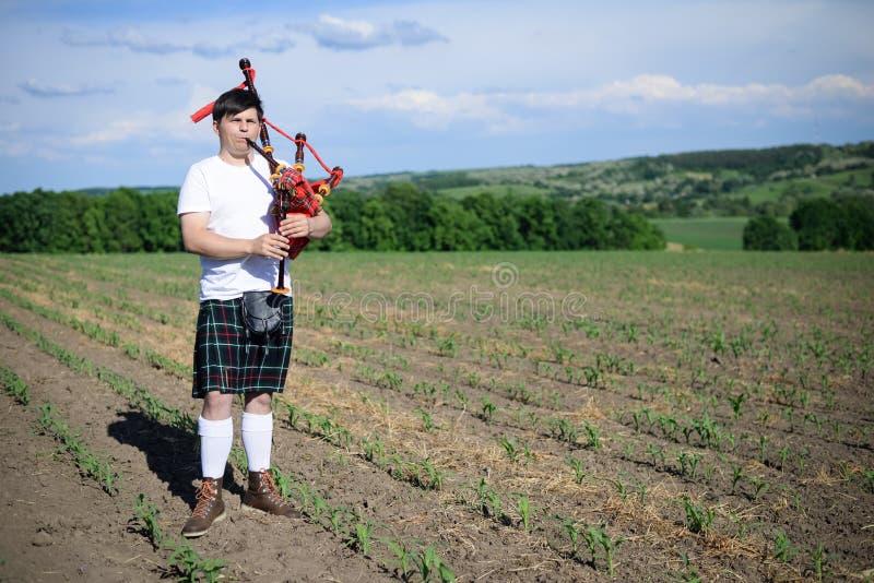 Le portrait du mâle appréciant jouant siffle dans le kilt traditionnel de Scotish sur le vert dehors photos stock
