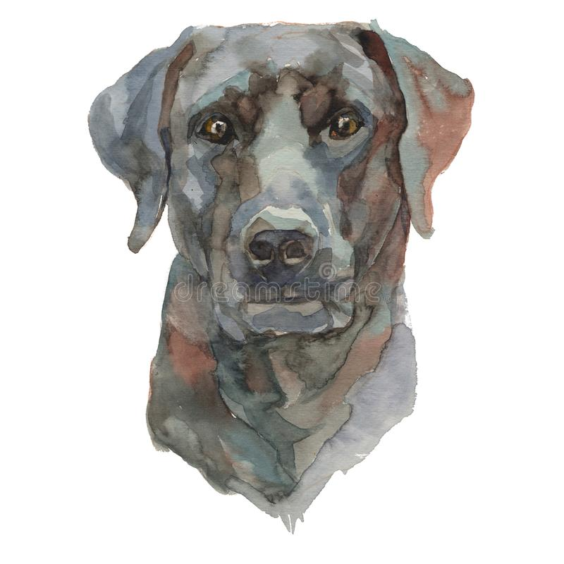 Le portrait peint à la main de chien d'aquarelle bestiar de Ca De illustration stock