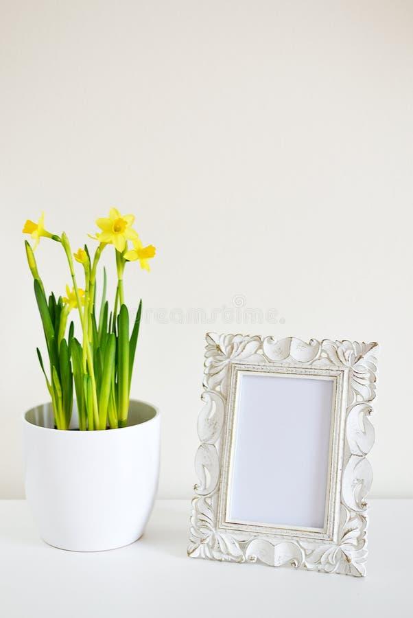 Le pot blanc avec des jonquilles et la photo encadrent le blanc de style de vintage photos stock