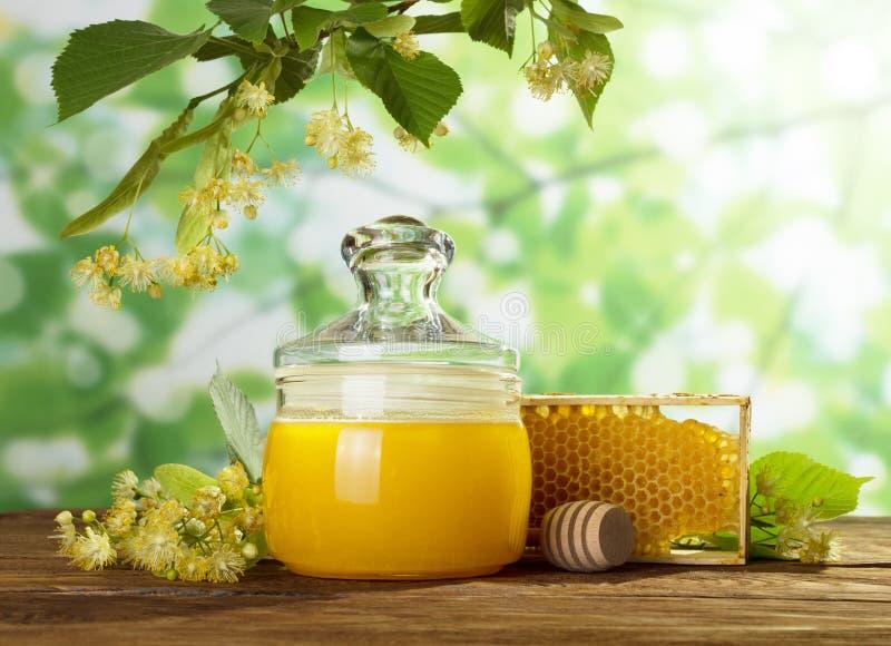 Le pot de miel et le nid d'abeilles sur la table en bois sous le tilleul s'embranchent image libre de droits