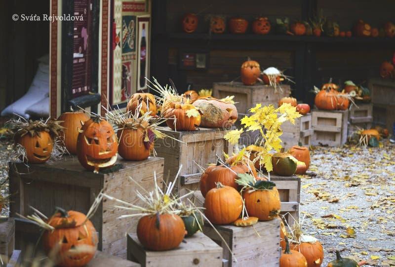 Le potiron d'épouvantail de Halloween était souteneur automne image stock