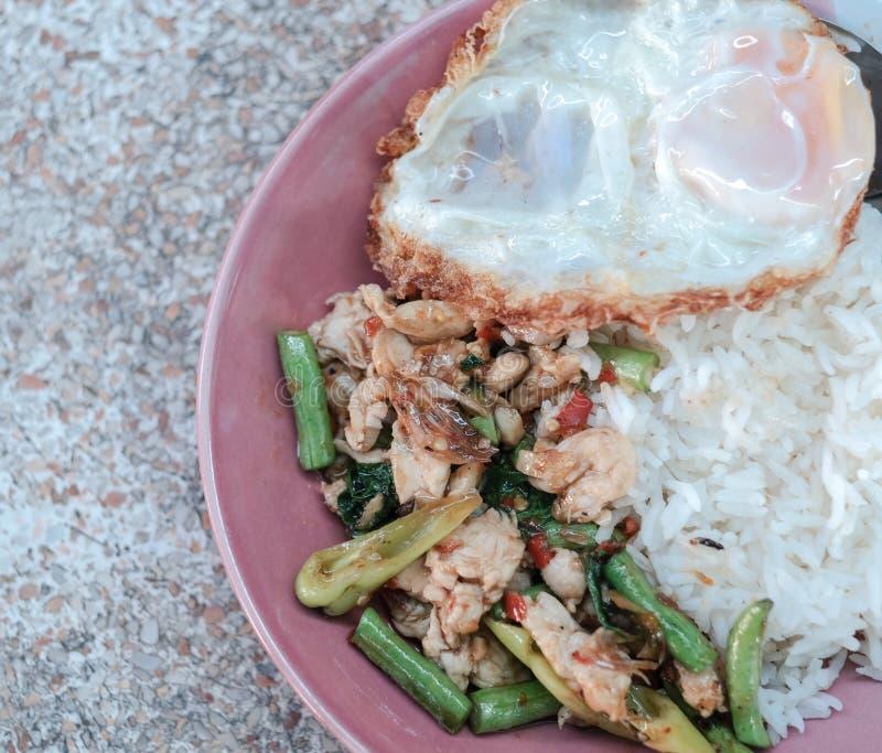 Le poulet épicé frit par émoi avec le basilic thaïlandais et le poivron doux, mangent avec du riz et l'oeuf au plat photo libre de droits