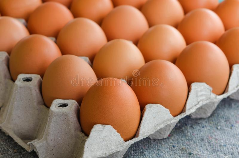 Le poulet cru en gros plan eggs dans la boîte à oeufs sur le tissu photos libres de droits