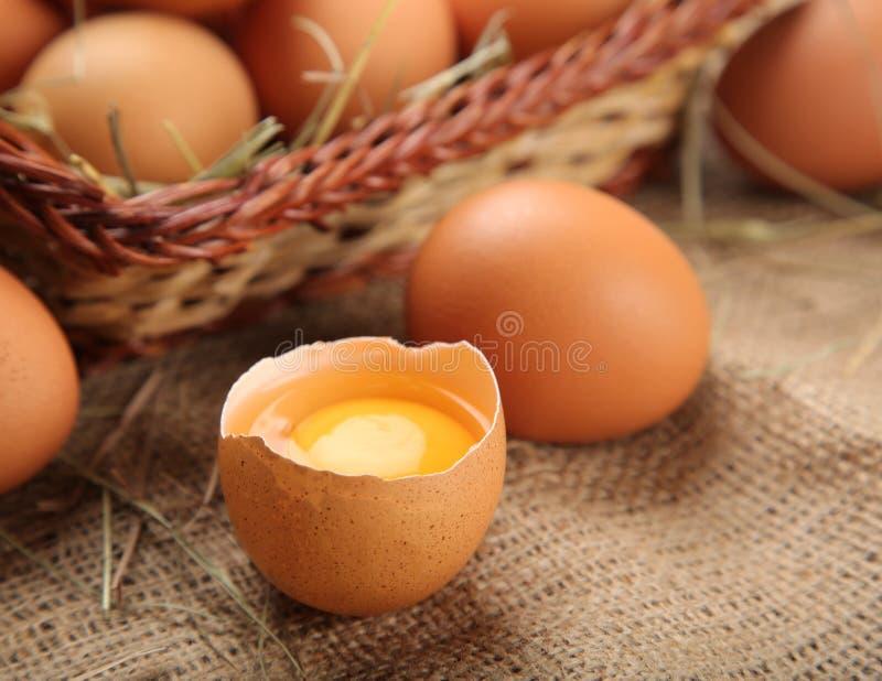 Le poulet frais eggs l'aliment biologique photo libre de droits