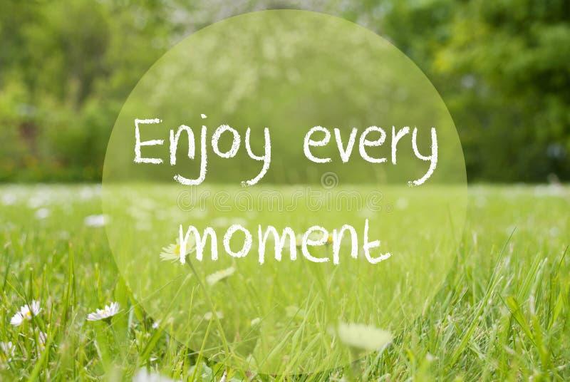 Le pré de Gras, Daisy Flowers, citation apprécient chaque moment image stock