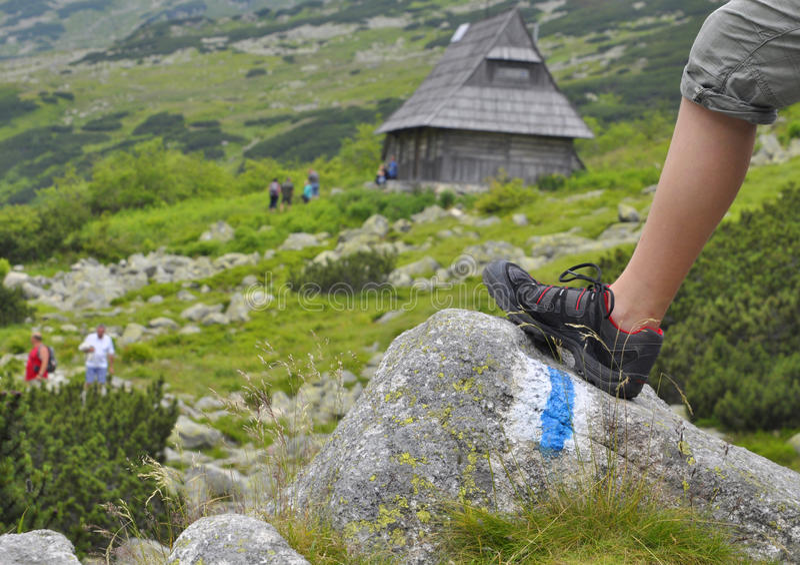 Le pré de la montagne photos stock