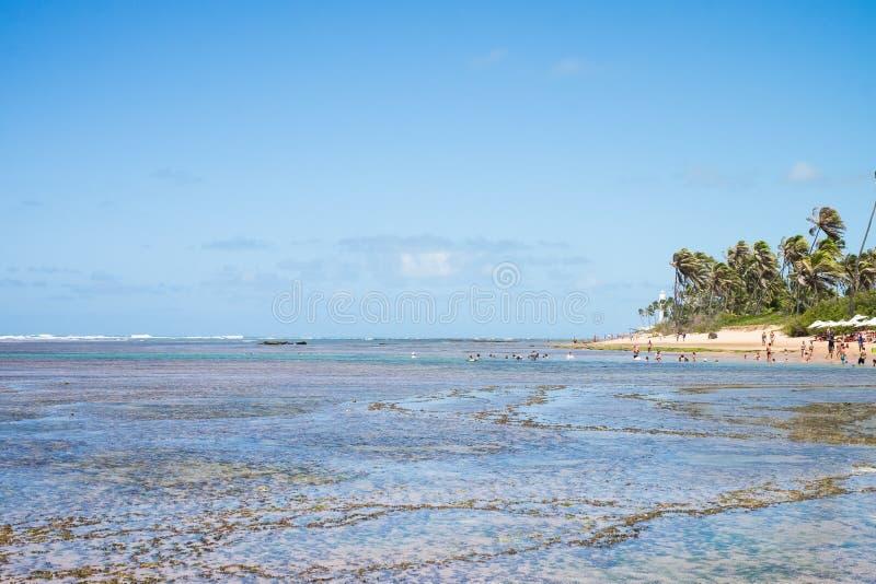 Le Praia font le forte au Bahia, Brésil images libres de droits