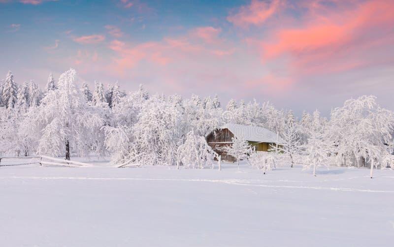 Le precipitazioni nevose pesanti hanno coperto gli alberi e le case nel vill della montagna immagini stock libere da diritti