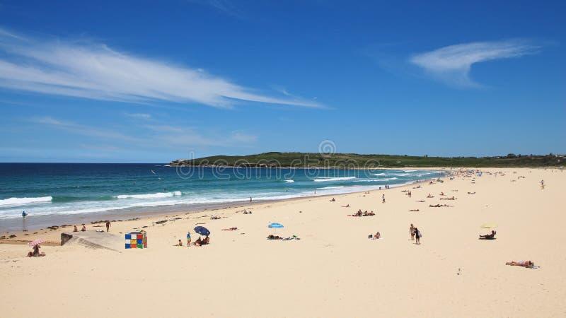 Le prenez un bain de soleil à la plage de Maroubra image libre de droits